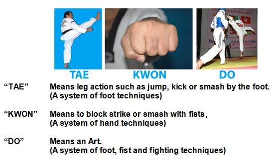 taekwondo essays